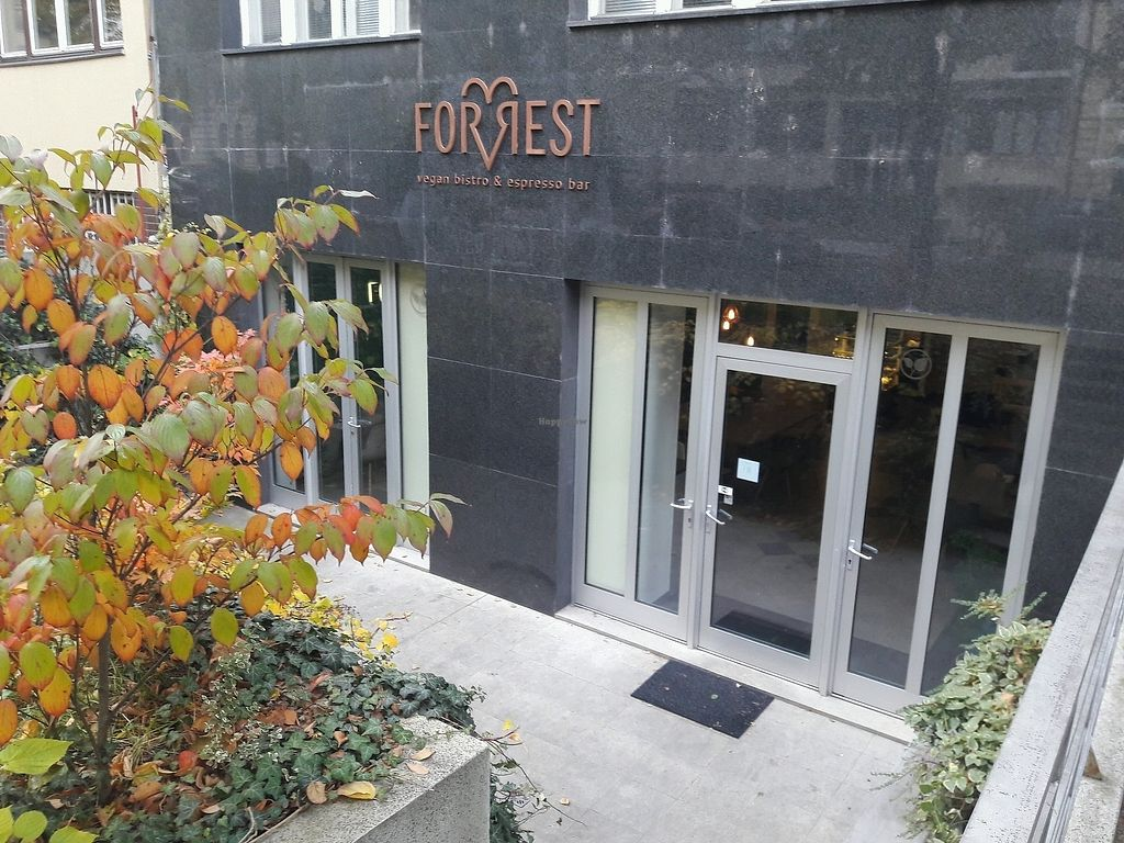 """Photo of Forrest Bistro  by <a href=""""/members/profile/jennyc32"""">jennyc32</a> <br/>Forrest Bistro <br/> November 10, 2017  - <a href='/contact/abuse/image/102335/323977'>Report</a>"""