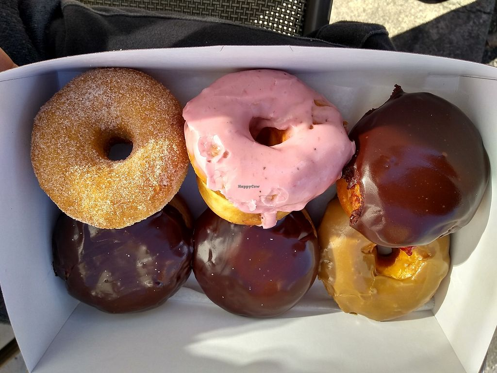 "Photo of Sugar Shack Donuts & Coffee - Lombardy  by <a href=""/members/profile/cjbruce"">cjbruce</a> <br/>Vegan donuts at Sugar Shack <br/> February 13, 2018  - <a href='/contact/abuse/image/102489/358910'>Report</a>"