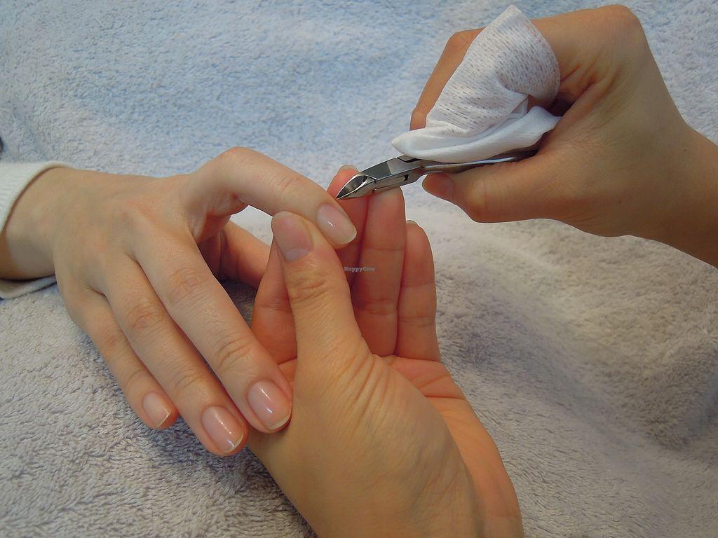 "Photo of Line Spa and Polish  by <a href=""/members/profile/SeikaKono"">SeikaKono</a> <br/>gentle nail care <br/> February 11, 2018  - <a href='/contact/abuse/image/102511/357979'>Report</a>"