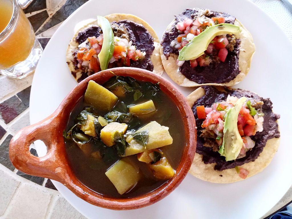 "Photo of Kombucha  by <a href=""/members/profile/JavierPrunera"">JavierPrunera</a> <br/> Tortillas de maíz, frijoles, berenjena asada, queso base semilla de girasol, chirimol y aguacate + sopa de camote/chipilín  <br/> December 5, 2017  - <a href='/contact/abuse/image/102662/332739'>Report</a>"