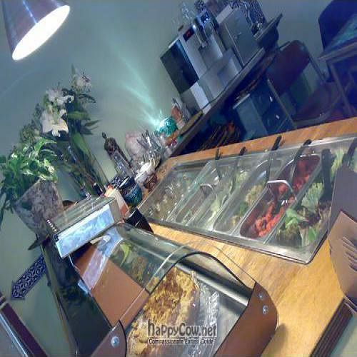 """Photo of VlamIndePan  by <a href=""""/members/profile/Lennaert"""">Lennaert</a> <br/>The help yourself saladbar and on top of that the dessert cakes. In the back you see the help yourself coffee and tea maker   <br/> June 21, 2009  - <a href='/contact/abuse/image/10268/2070'>Report</a>"""