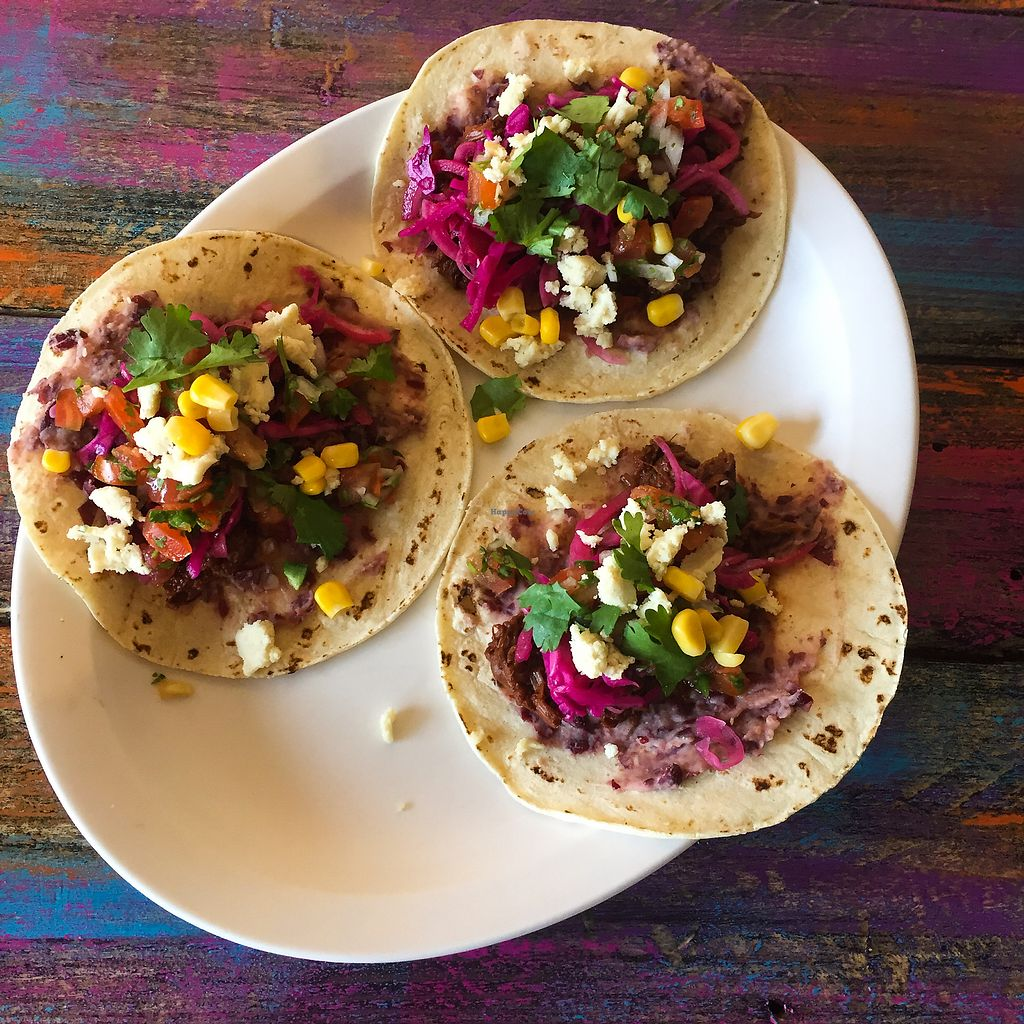 """Photo of Veganeville  by <a href=""""/members/profile/Anma2310"""">Anma2310</a> <br/>Jack fruit tacos  <br/> October 12, 2017  - <a href='/contact/abuse/image/102800/314648'>Report</a>"""