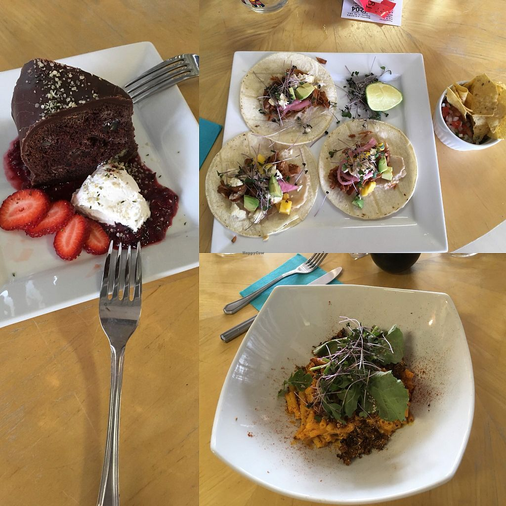 """Photo of Veganeville  by <a href=""""/members/profile/ChristyStef"""">ChristyStef</a> <br/>Chocolate cake, mac n cheese, jackfruit tacos <br/> April 19, 2018  - <a href='/contact/abuse/image/102800/388236'>Report</a>"""
