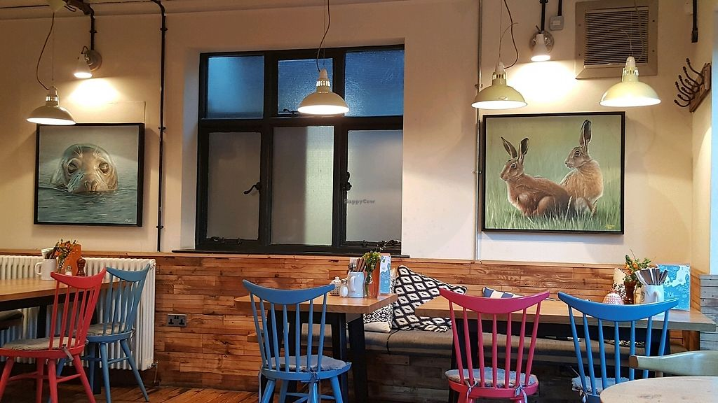 """Photo of The Viking Pub and Bakehouse  by <a href=""""/members/profile/Clare"""">Clare</a> <br/>dining <br/> February 20, 2018  - <a href='/contact/abuse/image/102920/361893'>Report</a>"""