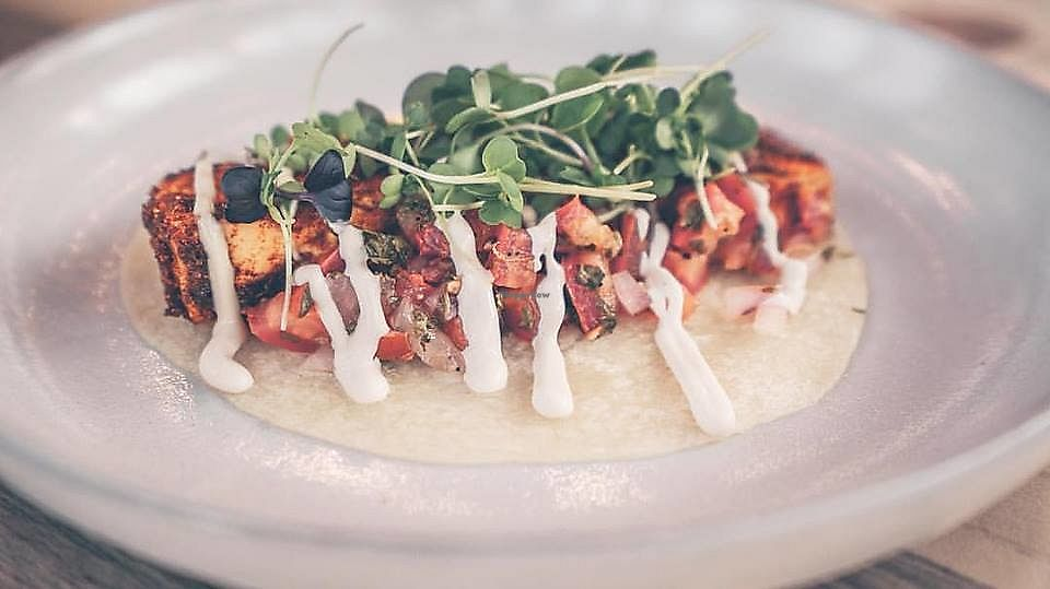 """Photo of Taps & Tacos  by <a href=""""/members/profile/community5"""">community5</a> <br/>Cajun tofu taco <br/> October 23, 2017  - <a href='/contact/abuse/image/103102/318153'>Report</a>"""
