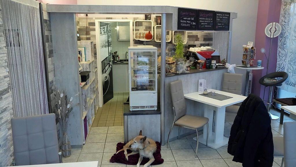 "Photo of Cafe Chez Rani  by <a href=""/members/profile/J%C3%BCrgenSchmidt"">JürgenSchmidt</a> <br/>rani <br/> November 25, 2017  - <a href='/contact/abuse/image/103451/329018'>Report</a>"