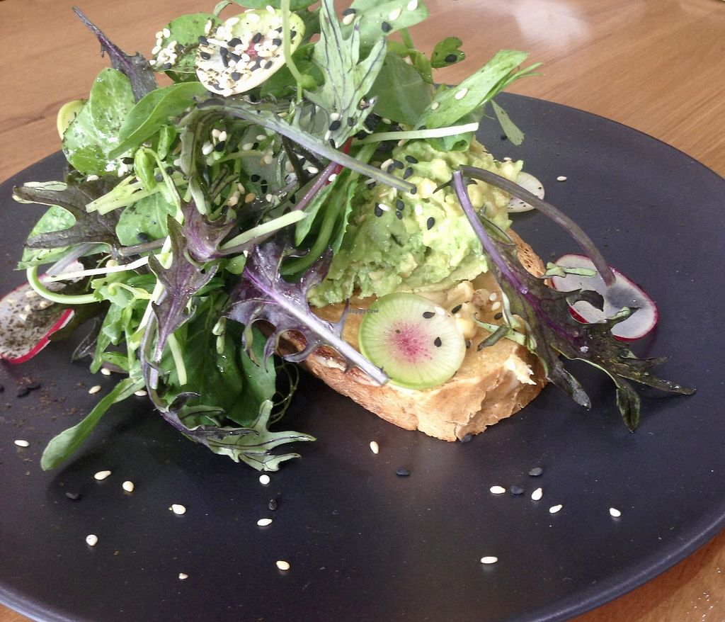 "Photo of Wild Plum Kitchen  by <a href=""/members/profile/AllisonReid"">AllisonReid</a> <br/>Tambo Avo - Local spray free avocado with miso butter, sesame, radish, mizuna and pea sprouts, toasted sourdough (Vegetarian. Vegan & GF option available) <br/> October 31, 2017  - <a href='/contact/abuse/image/103479/320297'>Report</a>"