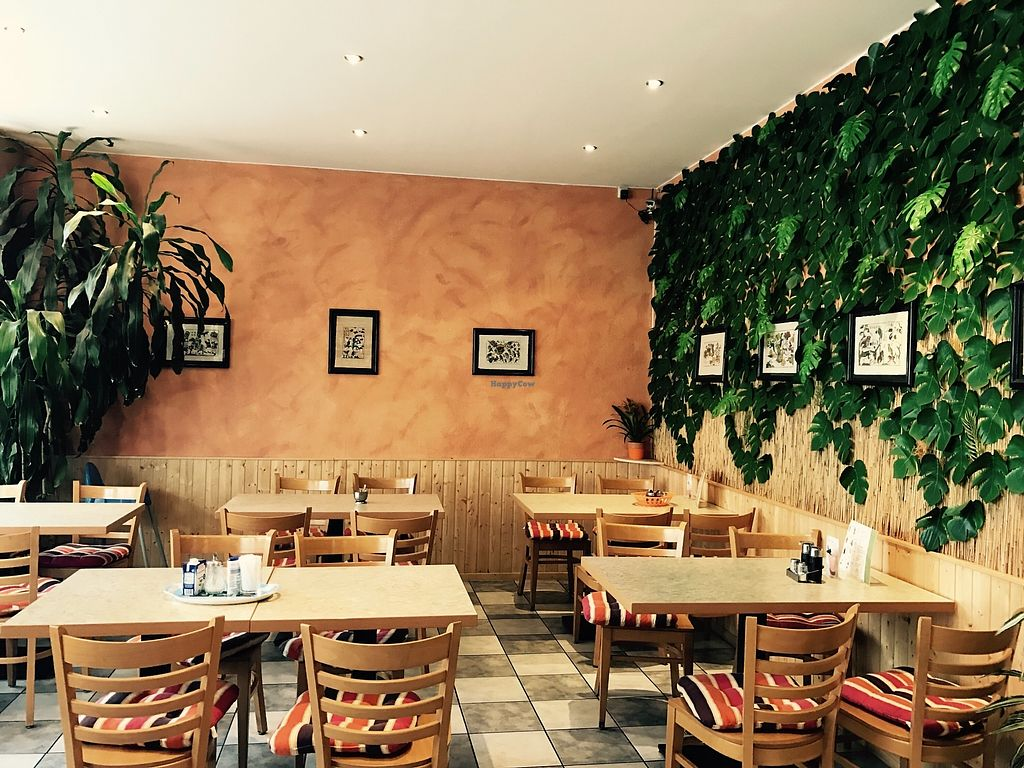 """Photo of Phuong Hong Asia Bistro  by <a href=""""/members/profile/Minnywowow"""">Minnywowow</a> <br/>Phuong Hong Asia Bistro in Neuruppin <br/> October 23, 2017  - <a href='/contact/abuse/image/103481/318176'>Report</a>"""
