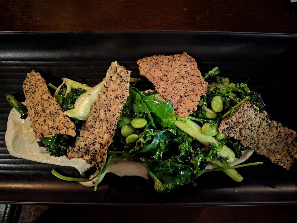 """Photo of Atticus Finch  by <a href=""""/members/profile/VTP"""">VTP</a> <br/>roasted greens salad <br/> November 11, 2017  - <a href='/contact/abuse/image/103721/324340'>Report</a>"""