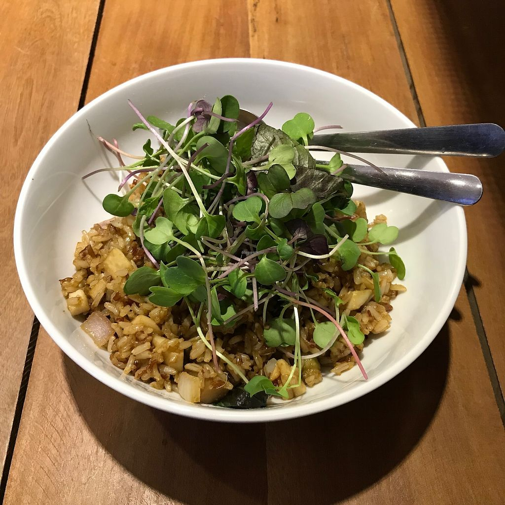 """Photo of Moringa Bar & Restaurant  by <a href=""""/members/profile/dannihargreaves1"""">dannihargreaves1</a> <br/>The vegan Bangkok bowl at Moringa Restaurant - favorite dish of the trip, had twice, wanted to have again! <br/> December 16, 2017  - <a href='/contact/abuse/image/103857/335996'>Report</a>"""