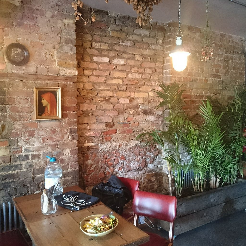 "Photo of Rehab  by <a href=""/members/profile/robz"">robz</a> <br/>Rehab cafe and bar Hackney <br/> November 7, 2017  - <a href='/contact/abuse/image/103934/323042'>Report</a>"