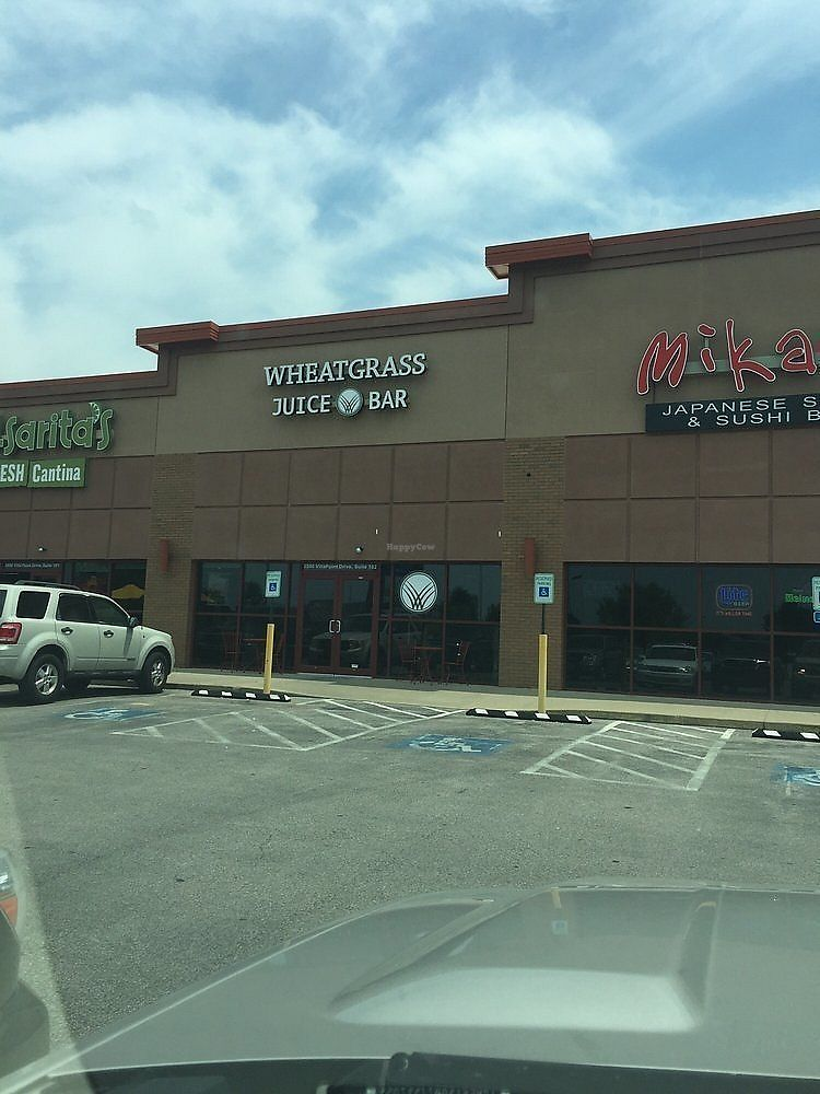"""Photo of Wheatgrass Juice Bar  by <a href=""""/members/profile/Wheatgrassjuicebar"""">Wheatgrassjuicebar</a> <br/>Outside parking lot provides lots of space for eating as well as two bistro sets outside to enjoy the weather <br/> November 1, 2017  - <a href='/contact/abuse/image/103989/320771'>Report</a>"""