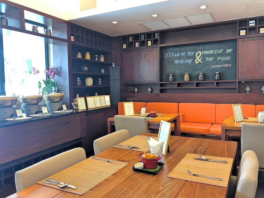 """Photo of DiLite Restaurant  by <a href=""""/members/profile/SoniaGivray"""">SoniaGivray</a> <br/>New restaurant, clean, modern! <br/> April 11, 2018  - <a href='/contact/abuse/image/104203/383702'>Report</a>"""