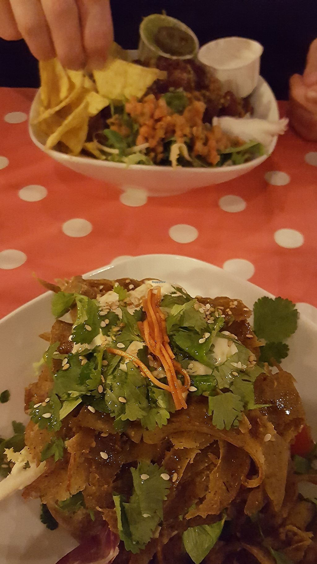 """Photo of Tapatat  by <a href=""""/members/profile/VeganAnnaS"""">VeganAnnaS</a> <br/>Best jacket potato ever! <br/> February 17, 2018  - <a href='/contact/abuse/image/104205/360480'>Report</a>"""