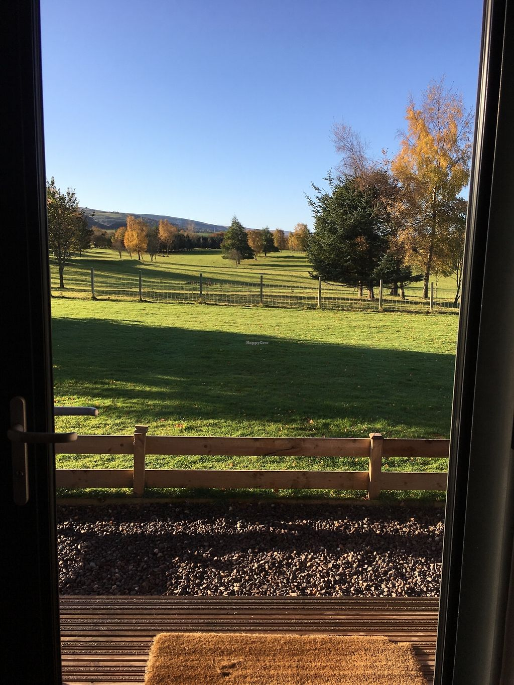 """Photo of Whitemoss Lodge B&B  by <a href=""""/members/profile/radiocaz"""">radiocaz</a> <br/>Neighbourly sheep to spot <br/> November 5, 2017  - <a href='/contact/abuse/image/104264/321983'>Report</a>"""