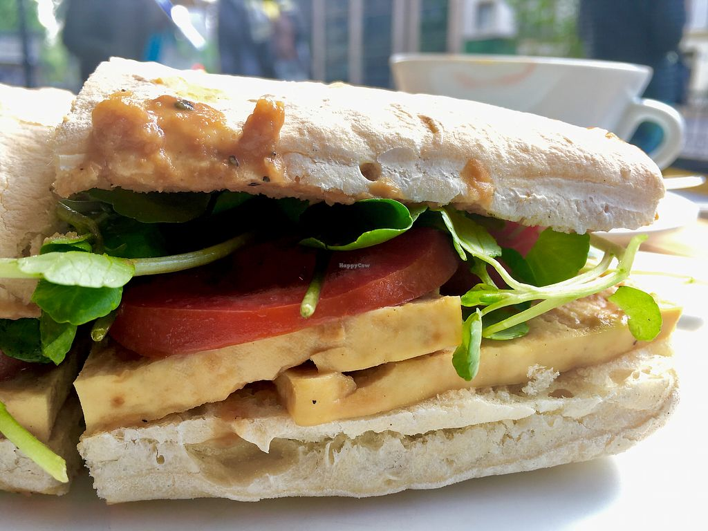 """Photo of Canamo Coffee  by <a href=""""/members/profile/milos99"""">milos99</a> <br/>Grilled tofu sandwich <br/> November 6, 2017  - <a href='/contact/abuse/image/104397/322598'>Report</a>"""