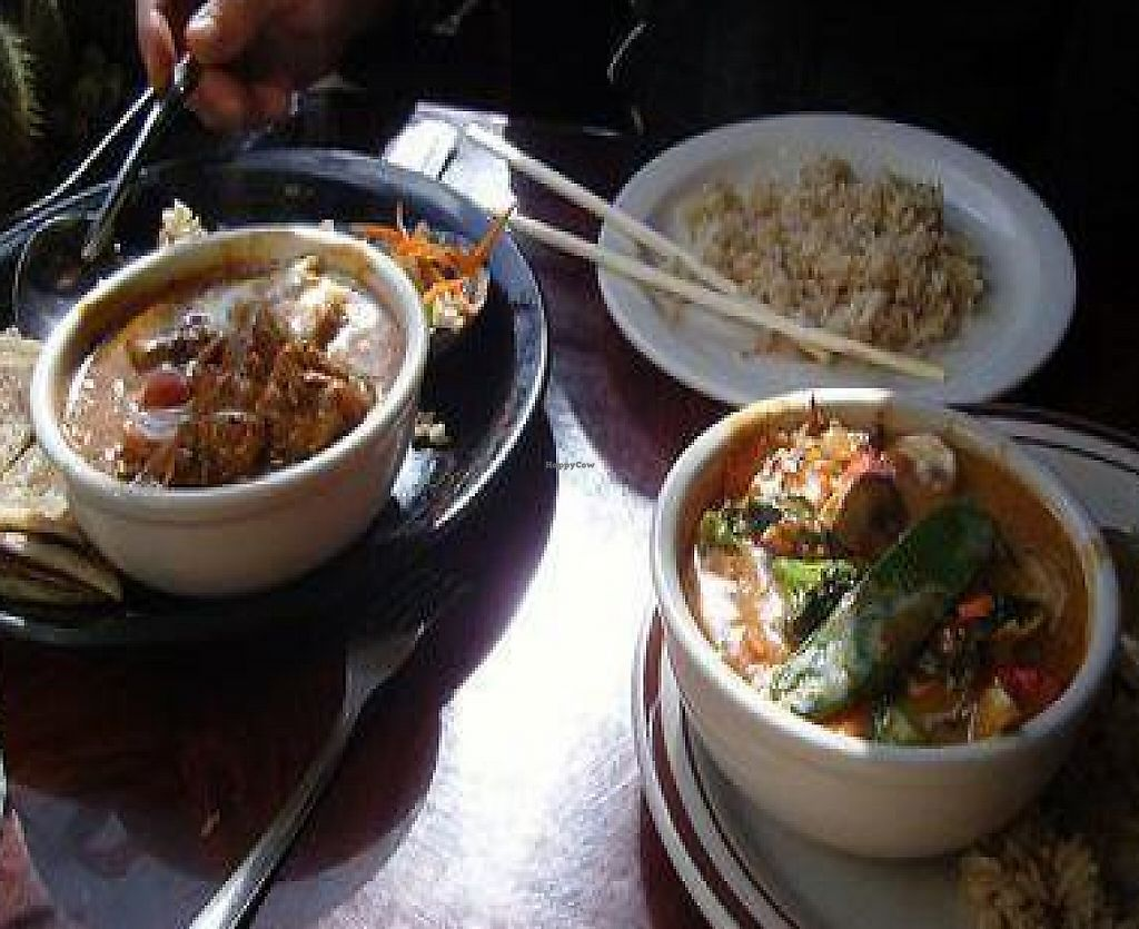 "Photo of In the Bowl - Vegetarian Noodle Bistro  by <a href=""/members/profile/lilmammal"">lilmammal</a> <br/>curries <br/> April 7, 2010  - <a href='/contact/abuse/image/10459/233132'>Report</a>"