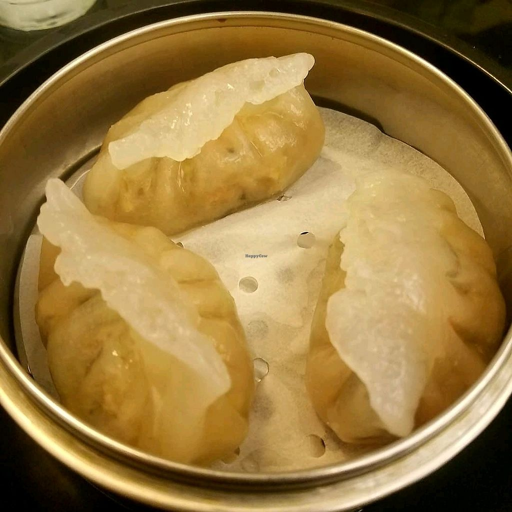 """Photo of Ginger Cafe  by <a href=""""/members/profile/thevegantrucker666"""">thevegantrucker666</a> <br/>vegetable dumplings  <br/> January 10, 2018  - <a href='/contact/abuse/image/104625/344928'>Report</a>"""