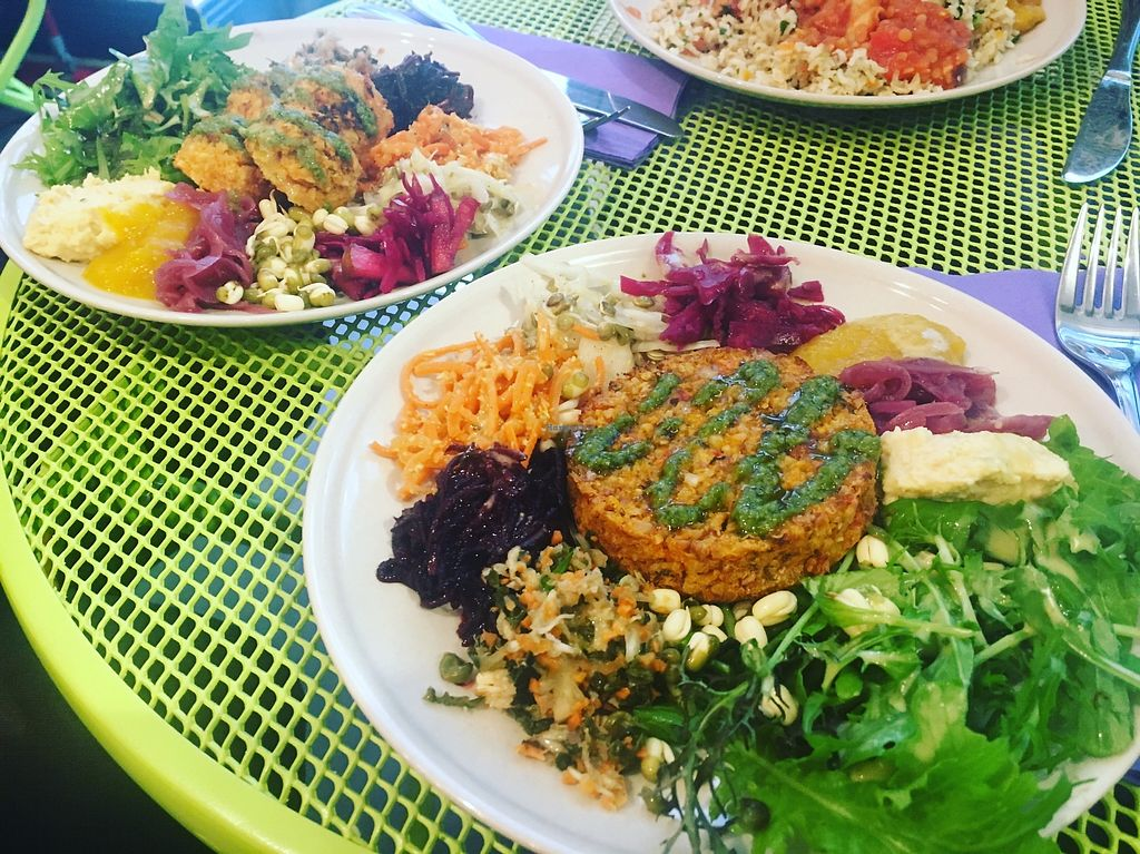 "Photo of The Cutting Vedge  by <a href=""/members/profile/irishvegangirl"">irishvegangirl</a> <br/>Nut roast, falafel and korma. ? <br/> November 16, 2017  - <a href='/contact/abuse/image/104810/326086'>Report</a>"