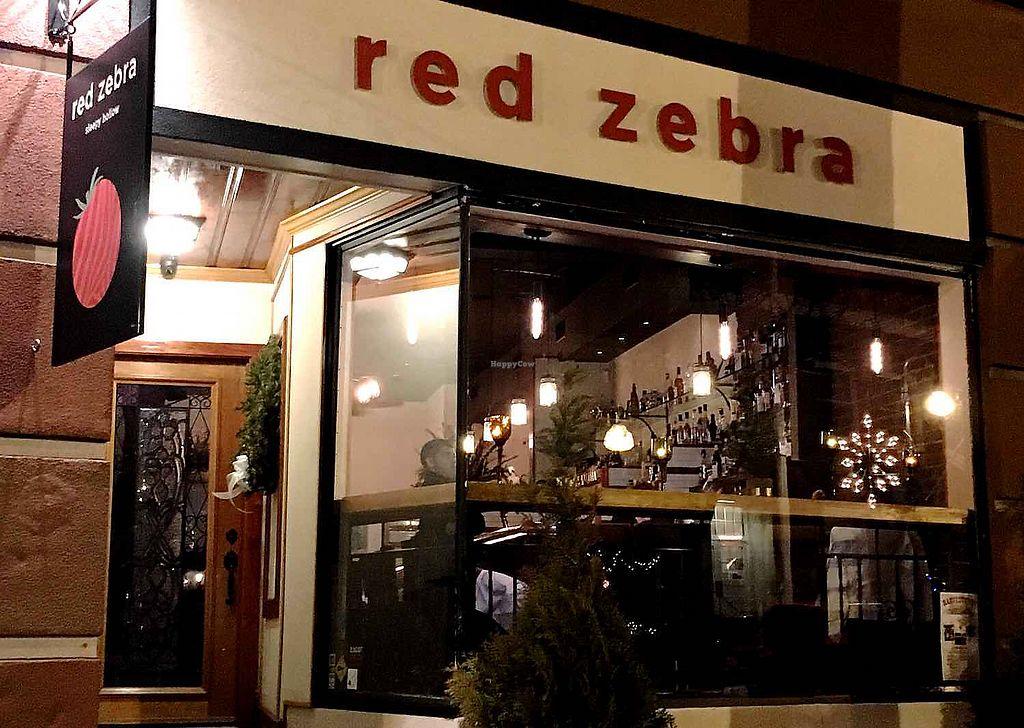 "Photo of Red Zebra  by <a href=""/members/profile/BriggitteJ"">BriggitteJ</a> <br/>Red zebra exterior  <br/> November 12, 2017  - <a href='/contact/abuse/image/104875/324753'>Report</a>"