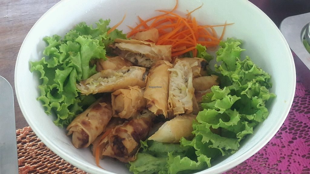 """Photo of Give Green Farm House Restaurant  by <a href=""""/members/profile/GiveGreenFarmHouseRes"""">GiveGreenFarmHouseRes</a> <br/>Spring roll <br/> November 13, 2017  - <a href='/contact/abuse/image/104911/325303'>Report</a>"""