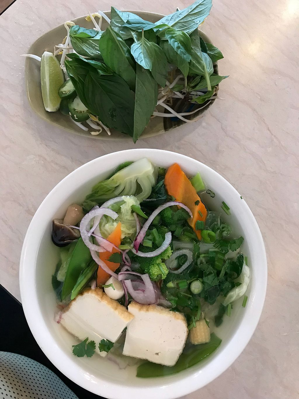 """Photo of Pho An & Sushi Bar  by <a href=""""/members/profile/GraceRountree"""">GraceRountree</a> <br/>Vegan Pho <br/> April 30, 2018  - <a href='/contact/abuse/image/105147/393194'>Report</a>"""