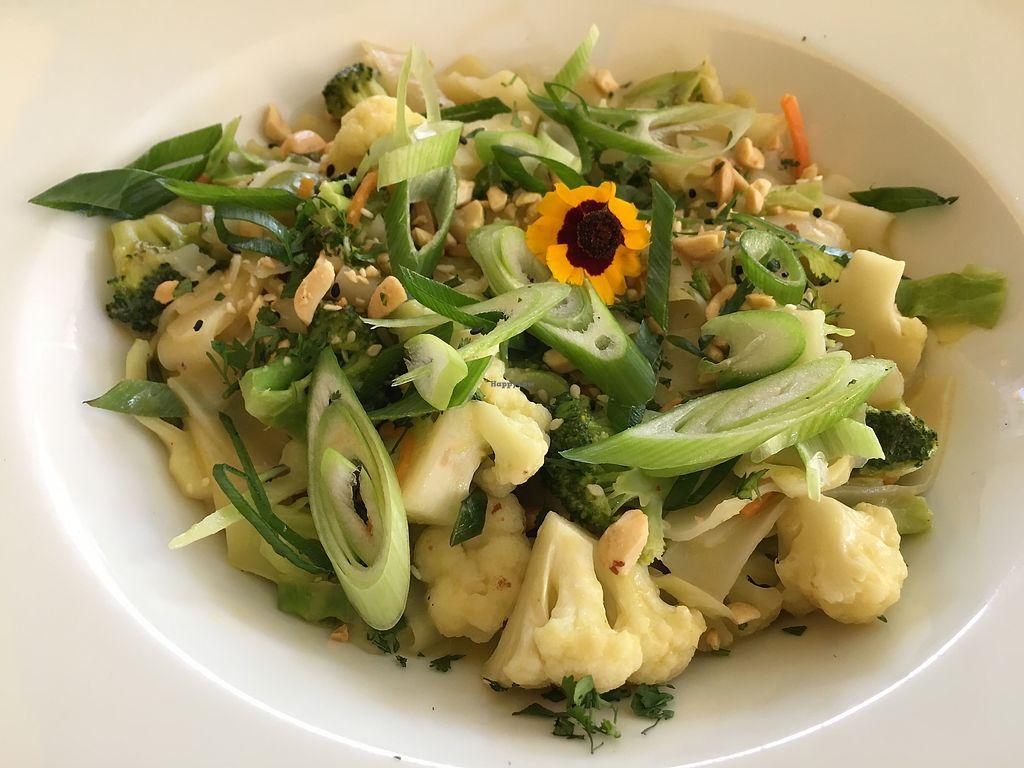 """Photo of Colibri Restaurant  by <a href=""""/members/profile/CrisyRivera"""">CrisyRivera</a> <br/>Pasta <br/> November 16, 2017  - <a href='/contact/abuse/image/105161/326196'>Report</a>"""