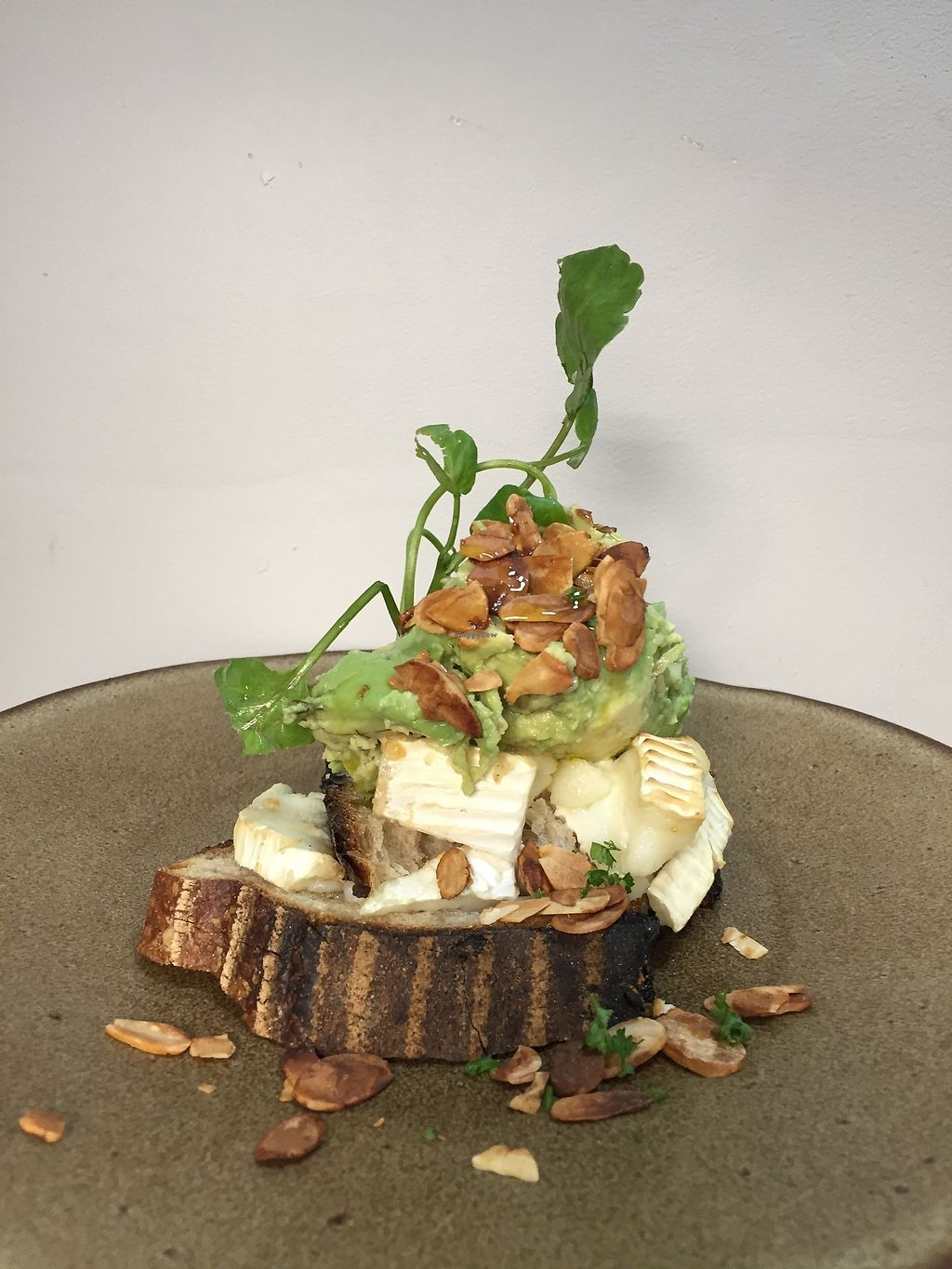 """Photo of Partisan  by <a href=""""/members/profile/lunaandpig"""">lunaandpig</a> <br/>Goats cheese and smashed avocado with smoked almonds and chilli oil <br/> November 16, 2017  - <a href='/contact/abuse/image/105222/326104'>Report</a>"""