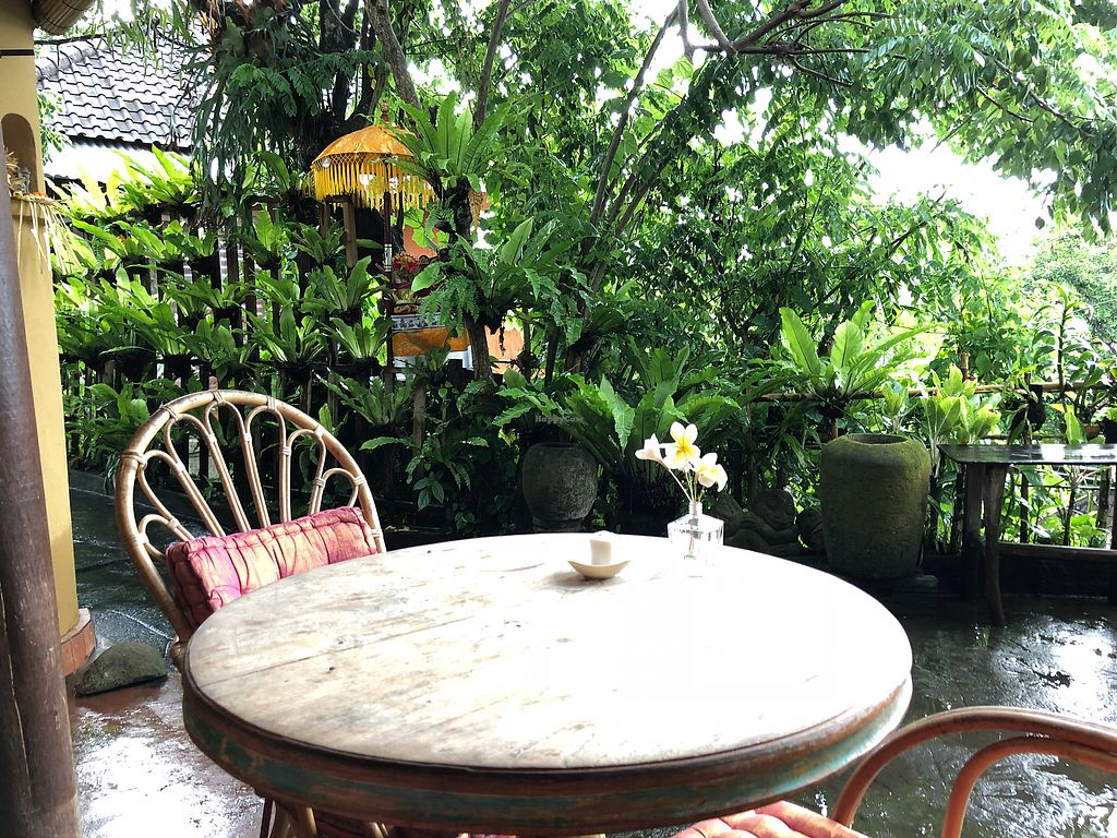 """Photo of Yellow Flower Cafe  by <a href=""""/members/profile/kikapetrovic"""">kikapetrovic</a> <br/>outside the cafe <br/> November 19, 2017  - <a href='/contact/abuse/image/105447/327262'>Report</a>"""