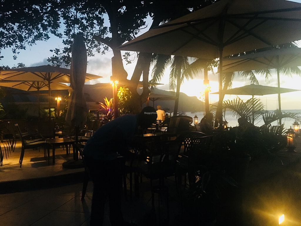 """Photo of Mac's Pizzeria  by <a href=""""/members/profile/veganmom"""">veganmom</a> <br/>Outdoor seating <br/> November 22, 2017  - <a href='/contact/abuse/image/105671/328114'>Report</a>"""