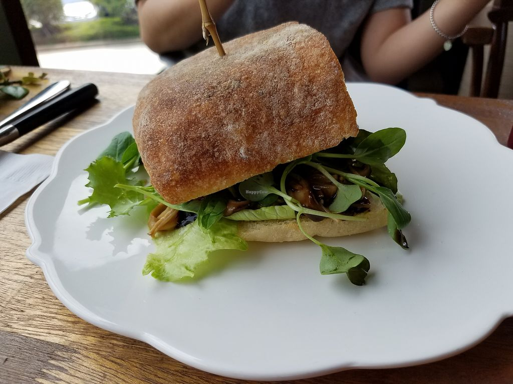 """Photo of Cafe901  by <a href=""""/members/profile/HannahP96"""">HannahP96</a> <br/>Mushroom sandwich <br/> May 14, 2018  - <a href='/contact/abuse/image/105696/399487'>Report</a>"""