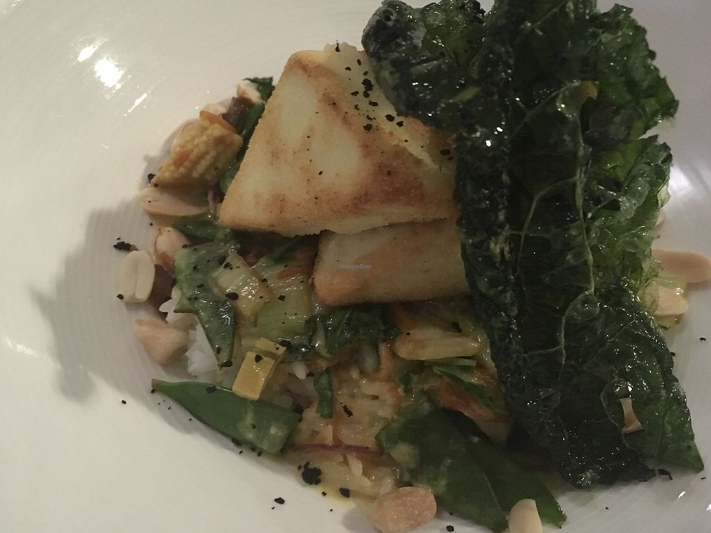 """Photo of Two Buoys Bistro  by <a href=""""/members/profile/monisonfire"""">monisonfire</a> <br/>fried tofu curry <br/> January 7, 2018  - <a href='/contact/abuse/image/105720/344071'>Report</a>"""