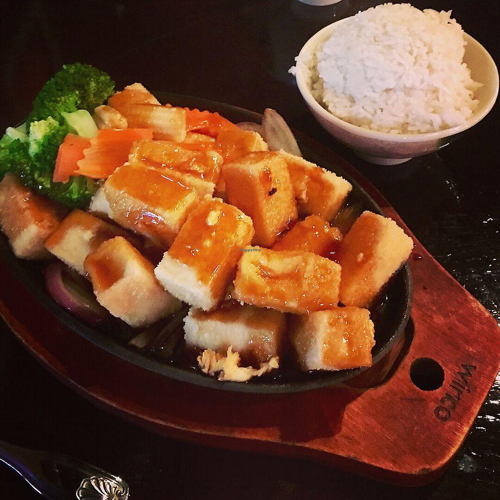 "Photo of Kintaro  by <a href=""/members/profile/KarenTatur"">KarenTatur</a> <br/>Teryaki Tofu <br/> November 25, 2017  - <a href='/contact/abuse/image/105903/329134'>Report</a>"