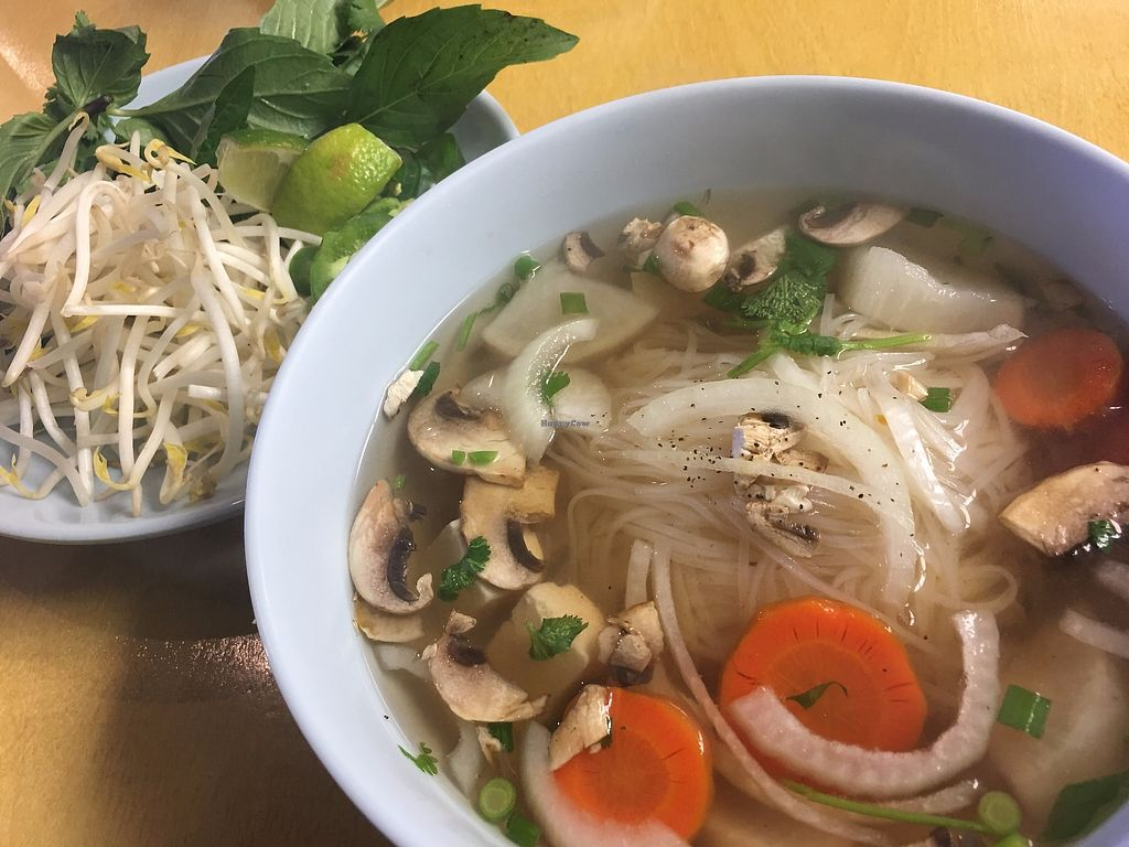 """Photo of Pho Cafe  by <a href=""""/members/profile/TraciH"""">TraciH</a> <br/>Vegan Pho <br/> November 27, 2017  - <a href='/contact/abuse/image/105928/329553'>Report</a>"""