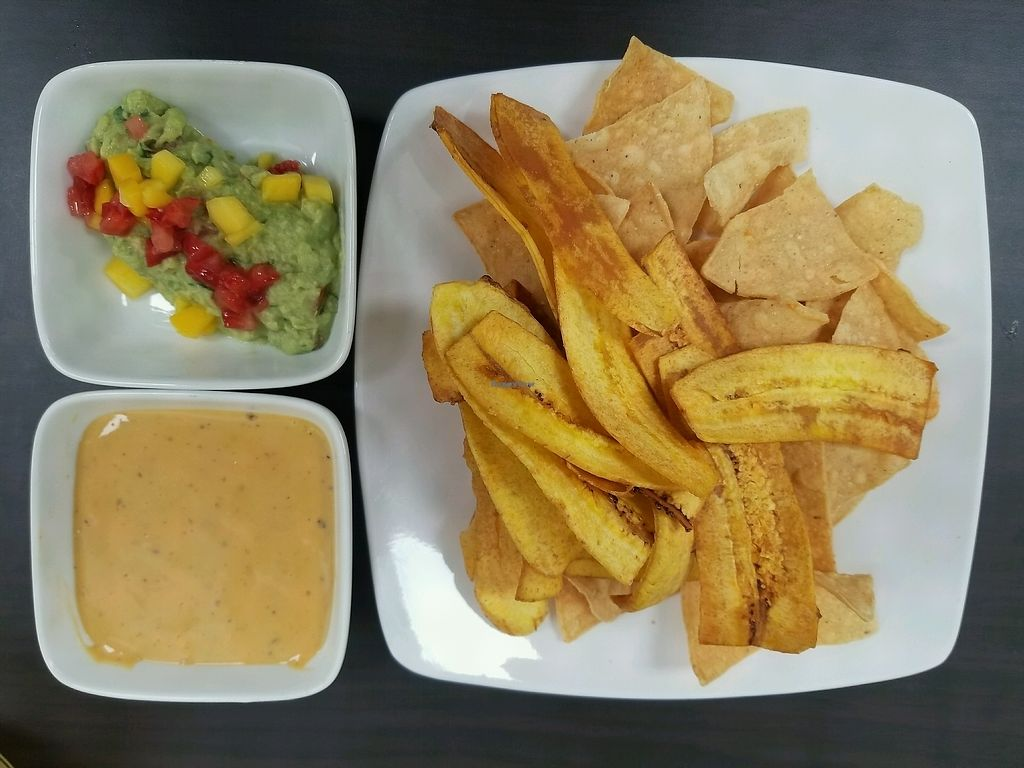 """Photo of 5 Elementos  by <a href=""""/members/profile/kenvegan"""">kenvegan</a> <br/>plantain chips, vegan queso and guacamole <br/> December 4, 2017  - <a href='/contact/abuse/image/105949/332157'>Report</a>"""