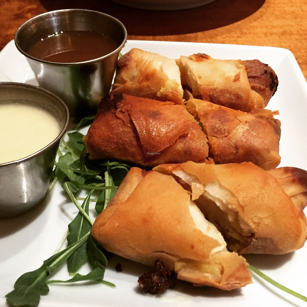 """Photo of Sage Vegan Bistro  by <a href=""""/members/profile/VeganCookieLover"""">VeganCookieLover</a> <br/>Crispy samosa rolls <br/> January 15, 2018  - <a href='/contact/abuse/image/105953/346942'>Report</a>"""