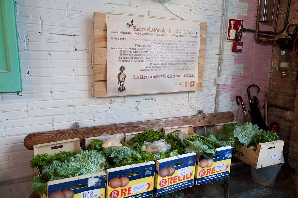 """Photo of La Reciclaria  by <a href=""""/members/profile/KarinVanVeen"""">KarinVanVeen</a> <br/>ask for your organic vegetables basket to take home <br/> November 27, 2017  - <a href='/contact/abuse/image/106030/329638'>Report</a>"""