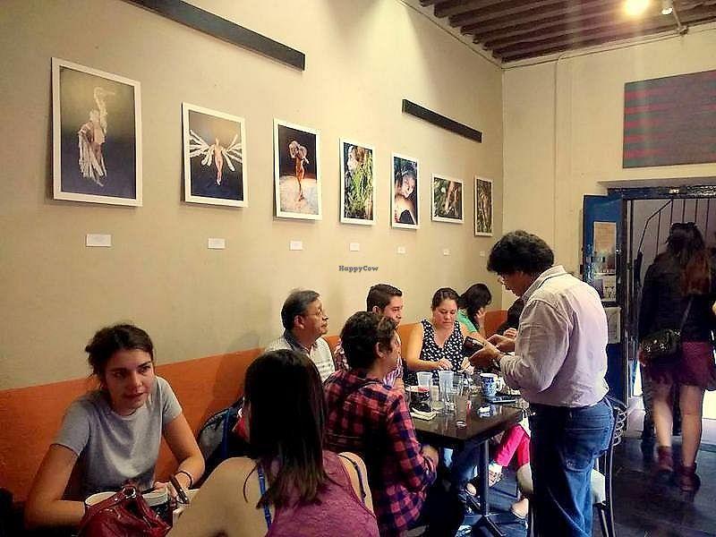 "Photo of Aguamiel Cafe   by <a href=""/members/profile/cafeaguamiel"">cafeaguamiel</a> <br/>galería Ashley Fell <br/> November 29, 2017  - <a href='/contact/abuse/image/106076/330644'>Report</a>"