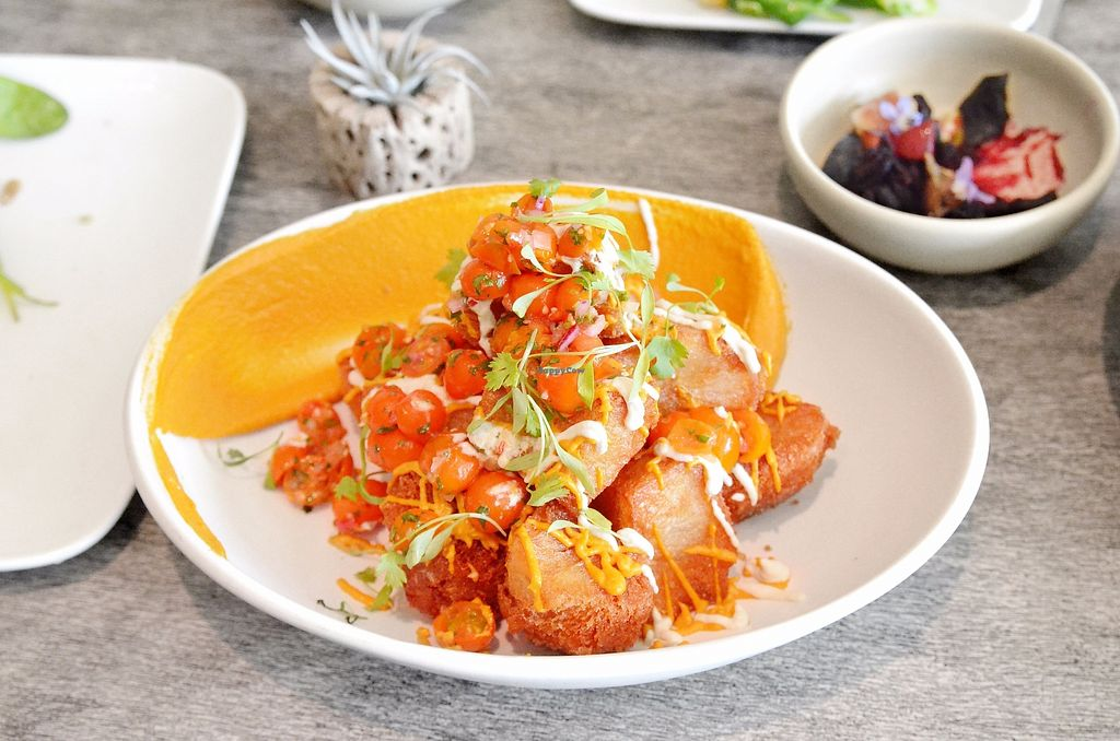 """Photo of Beefsteak  by <a href=""""/members/profile/KellyBone"""">KellyBone</a> <br/>POTACHOS carrot queso, sunflower sour cream, pico de gallo, pickled jalapeñ <br/> December 3, 2017  - <a href='/contact/abuse/image/106205/332106'>Report</a>"""