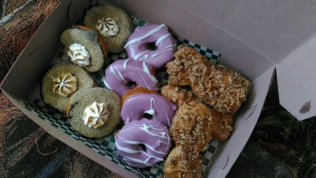 """Photo of Vandal Doughnuts  by <a href=""""/members/profile/QuothTheRaven"""">QuothTheRaven</a> <br/>vegan smores, blueberry and maple walnut <br/> February 18, 2018  - <a href='/contact/abuse/image/106260/360588'>Report</a>"""
