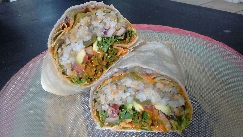 "Photo of Vengan by Vros  by <a href=""/members/profile/Encondalt"">Encondalt</a> <br/>Mexican Vegan Burrito.  <br/> November 30, 2017  - <a href='/contact/abuse/image/106303/330927'>Report</a>"