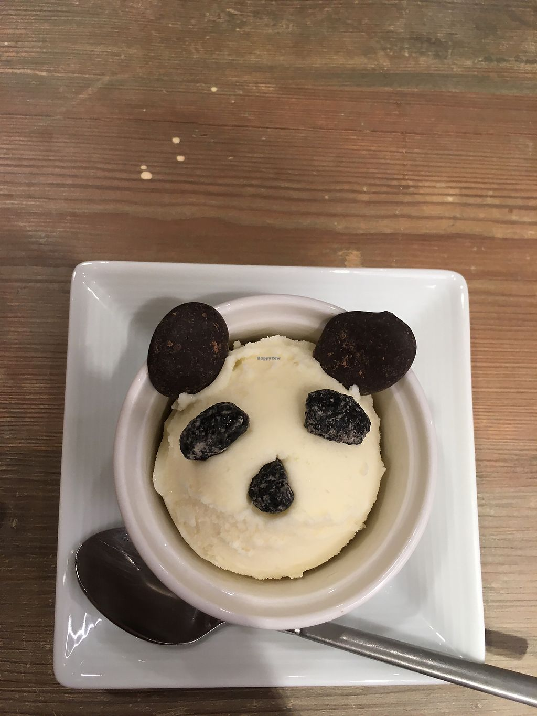 "Photo of T's Tantan - Ueno  by <a href=""/members/profile/bdonovan"">bdonovan</a> <br/>Icecream panda <br/> May 5, 2018  - <a href='/contact/abuse/image/106436/395316'>Report</a>"