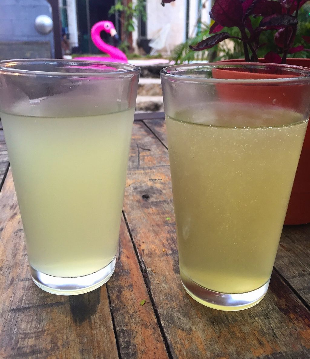 "Photo of Flow  by <a href=""/members/profile/denimval"">denimval</a> <br/>'Homemade' soft drink  <br/> March 10, 2018  - <a href='/contact/abuse/image/106604/368660'>Report</a>"