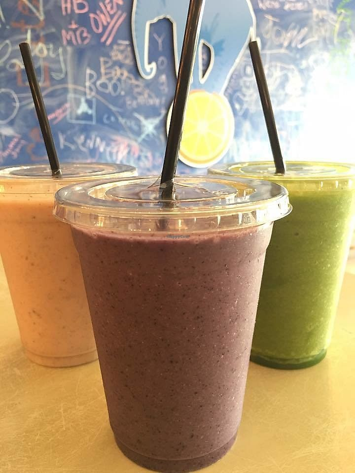 """Photo of Wild Blue  by <a href=""""/members/profile/BeccaBochenek"""">BeccaBochenek</a> <br/>Fresh organic smoothies. Photo by Wild Blue Grand Haven <br/> December 14, 2017  - <a href='/contact/abuse/image/106936/335503'>Report</a>"""