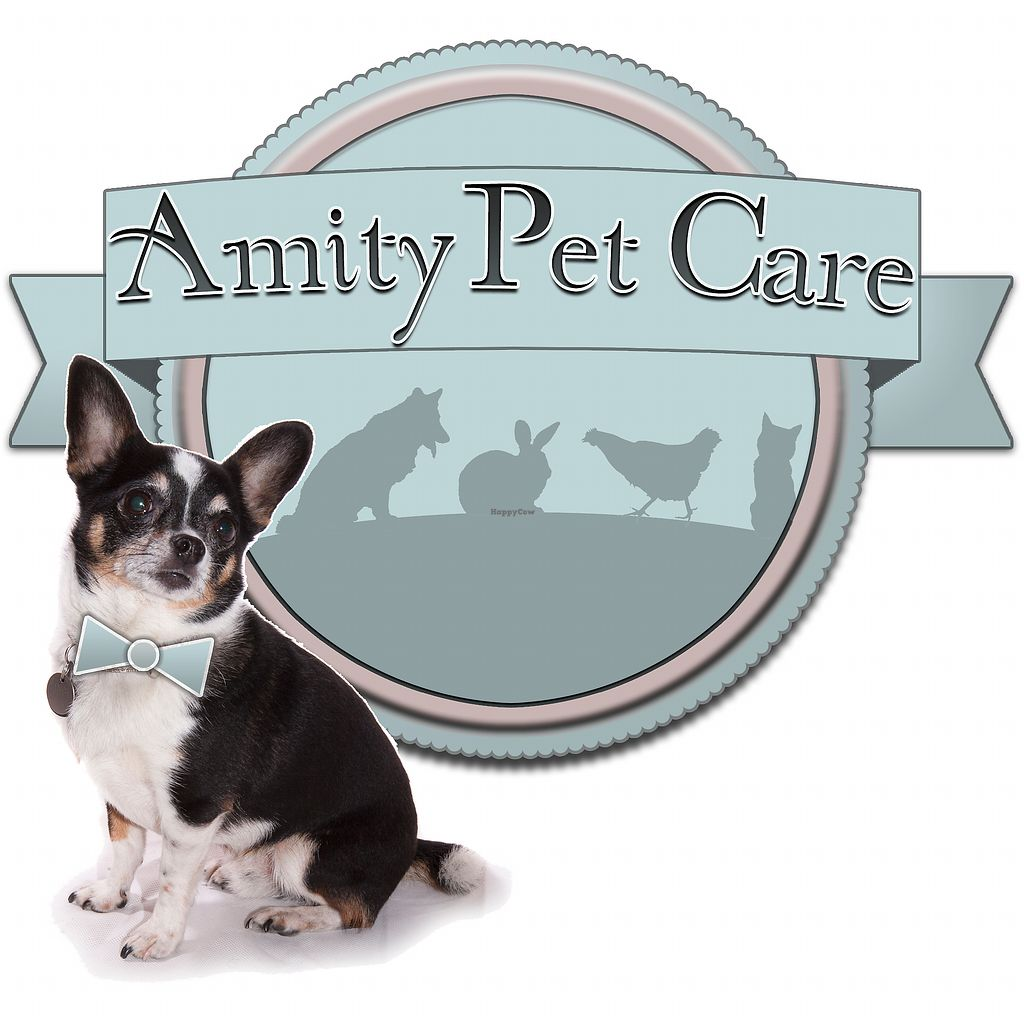 """Photo of Amity Pet Care  by <a href=""""/members/profile/LauraStone90"""">LauraStone90</a> <br/>Amity Pet Care's logo <br/> December 31, 2017  - <a href='/contact/abuse/image/107043/341267'>Report</a>"""