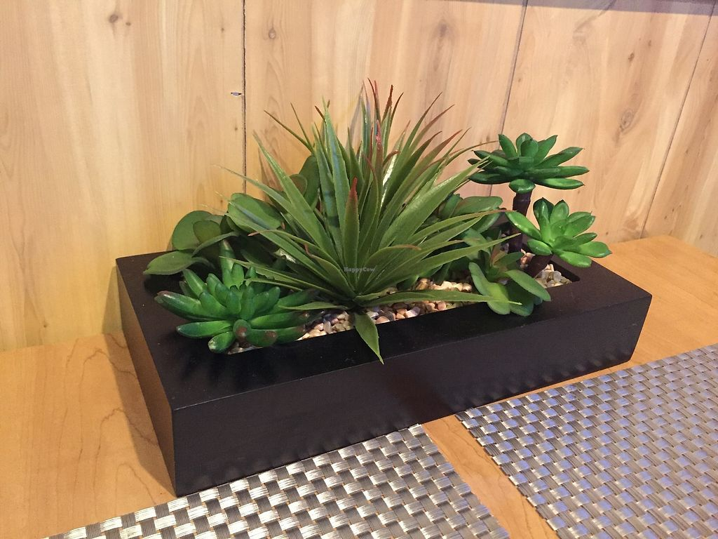 """Photo of Thai Vegan  by <a href=""""/members/profile/Suz"""">Suz</a> <br/>Beautiful arrangement of healthy plants on our table! <br/> December 24, 2017  - <a href='/contact/abuse/image/107165/338552'>Report</a>"""