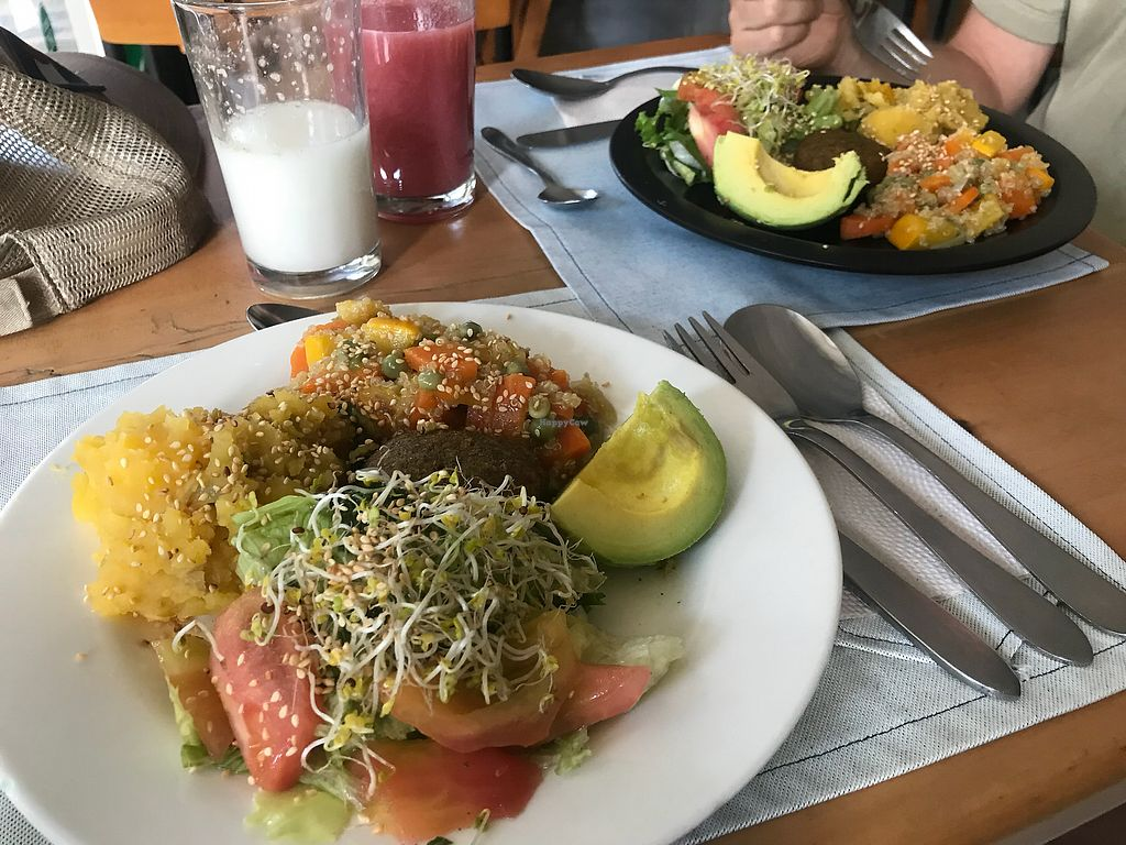 """Photo of El Arbol de la Vida  by <a href=""""/members/profile/Pearlpeachy"""">Pearlpeachy</a> <br/>Meal of the day: salad, avocado, quinoa and mixed veggies, mashed potato with plantain and a little falafel patty <br/> November 23, 2017  - <a href='/contact/abuse/image/10720/328491'>Report</a>"""