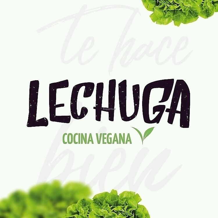 """Photo of Lechuga  by <a href=""""/members/profile/RafaelSotoriva"""">RafaelSotoriva</a> <br/>Lechuga <br/> December 16, 2017  - <a href='/contact/abuse/image/107400/336289'>Report</a>"""
