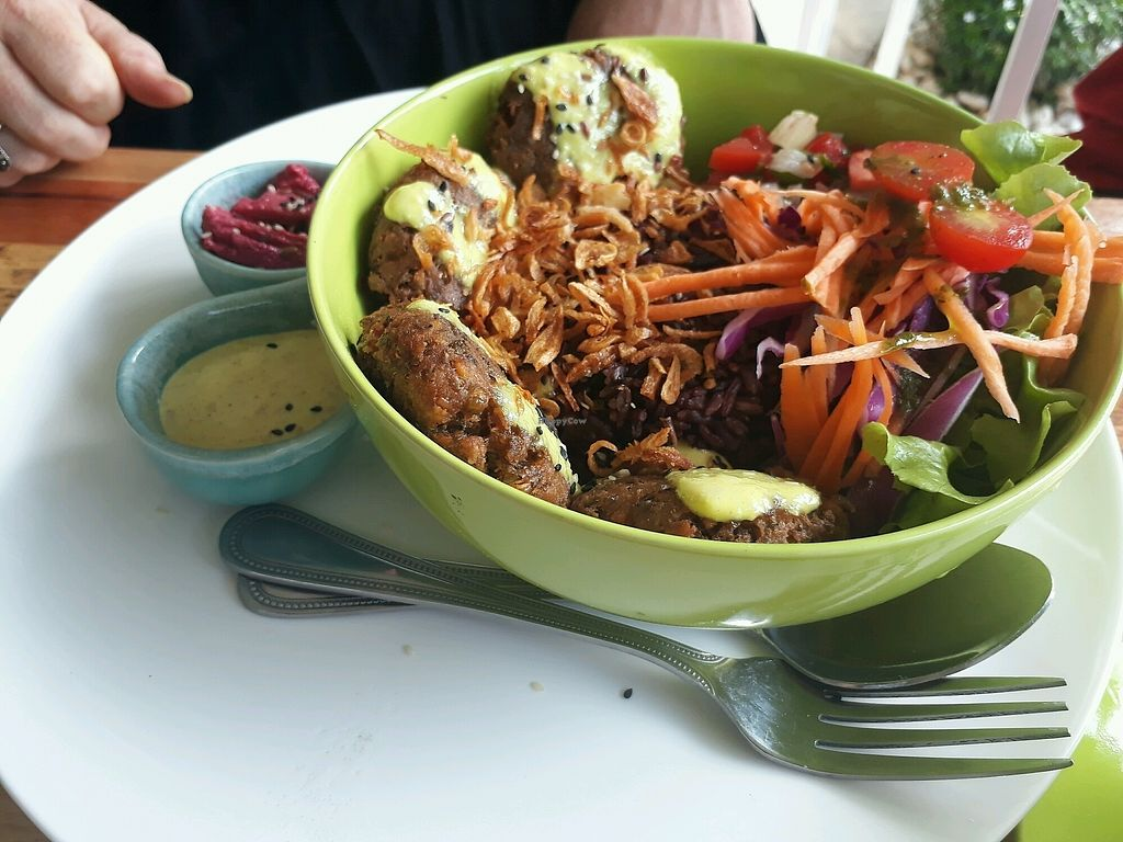 """Photo of Pure Vegan Heaven  by <a href=""""/members/profile/LilacHippy"""">LilacHippy</a> <br/>Falafel Bowl <br/> January 11, 2018  - <a href='/contact/abuse/image/107419/345400'>Report</a>"""