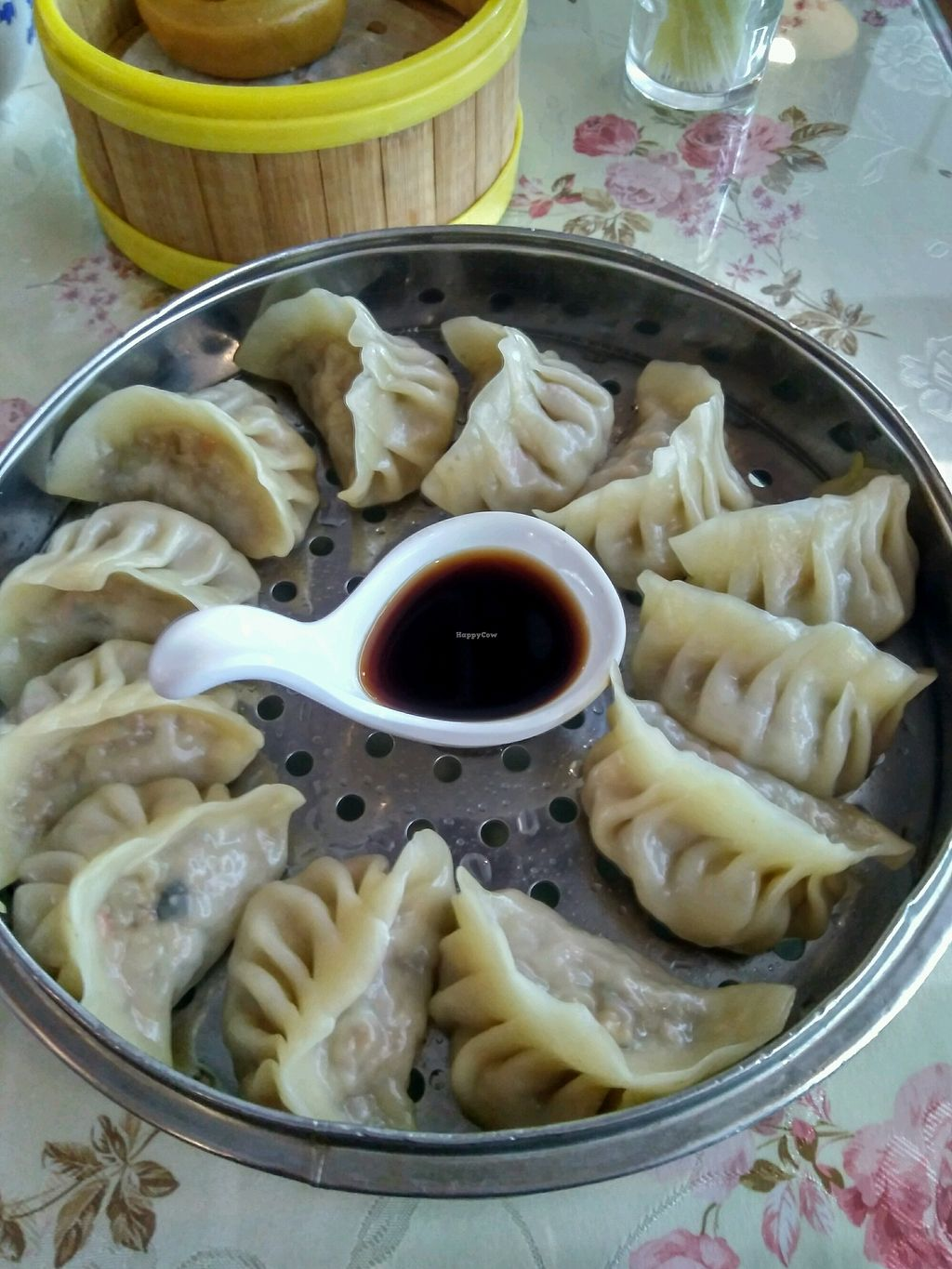 """Photo of Huiyuan Sanbao Health Preservation Vegetarian  by <a href=""""/members/profile/JackTanner"""">JackTanner</a> <br/>dumplings  <br/> January 12, 2018  - <a href='/contact/abuse/image/107424/345681'>Report</a>"""